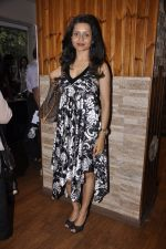 Bhavna Pani attends Nicolai Freidrich illusion show brought to India by Ashvin Gidwani in St Andrews, Mumbai on 27th July 2014 (147)_53d5e3e2dbd48.JPG