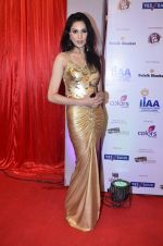 at IIAA Awards in Filmcity, Mumbai on 27th July 2014 (19)_53d613c16b2ff.JPG