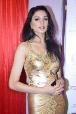 at IIAA Awards in Filmcity, Mumbai on 27th July 2014 (20)_53d613c213443.JPG