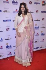 at IIAA Awards in Filmcity, Mumbai on 27th July 2014 (21)_53d613c2ad16c.JPG