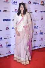 at IIAA Awards in Filmcity, Mumbai on 27th July 2014 (22)_53d613c3464b3.JPG