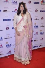 at IIAA Awards in Filmcity, Mumbai on 27th July 2014 (23)_53d613c3cc4f2.JPG