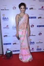 at IIAA Awards in Filmcity, Mumbai on 27th July 2014 (39)_53d613c7de95c.JPG