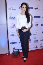 at IIAA Awards in Filmcity, Mumbai on 27th July 2014 (58)_53d613d4b86d9.JPG