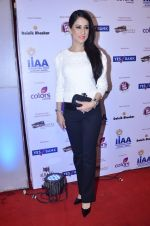 at IIAA Awards in Filmcity, Mumbai on 27th July 2014 (59)_53d613d7db776.JPG