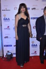 at IIAA Awards in Filmcity, Mumbai on 27th July 2014 (61)_53d613d9a9e22.JPG