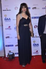 at IIAA Awards in Filmcity, Mumbai on 27th July 2014 (62)_53d613da745b7.JPG