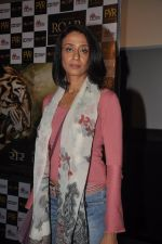 Achint Kaur at Kamal Saldanah_s roar film launch in Mumbai on 31st July 2014 (107)_53db8cc505128.JPG