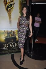 Himarsha V at Kamal Saldanah_s roar film launch in Mumbai on 31st July 2014 (28)_53db8d4071e58.JPG