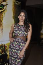 Himarsha V at Kamal Saldanah_s roar film launch in Mumbai on 31st July 2014 (29)_53db8d41da13f.JPG
