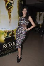 Himarsha V at Kamal Saldanah_s roar film launch in Mumbai on 31st July 2014 (31)_53db8d4472c3f.JPG
