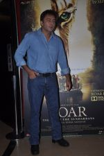 Kamal Saldanah_s roar film launch in Mumbai on 31st July 2014 (87)_53db8dedcb58c.JPG