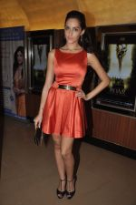 Naura Fatehi at Kamal Saldanah_s roar film launch in Mumbai on 31st July 2014 (54)_53db8d8b1aa97.JPG