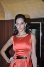 Naura Fatehi at Kamal Saldanah_s roar film launch in Mumbai on 31st July 2014 (56)_53db8d8db7777.JPG