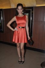 Naura Fatehi at Kamal Saldanah_s roar film launch in Mumbai on 31st July 2014 (58)_53db8d8f0ca87.JPG