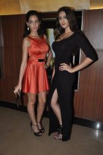 Naura Fatehi at Kamal Saldanah_s roar film launch in Mumbai on 31st July 2014 (60)_53db8d91b8e40.JPG
