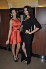 Naura Fatehi at Kamal Saldanah_s roar film launch in Mumbai on 31st July 2014 (62)_53db8d946e84a.JPG