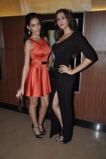 Naura Fatehi at Kamal Saldanah_s roar film launch in Mumbai on 31st July 2014 (63)_53db8d95b9d81.JPG