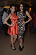 Naura Fatehi, Himarsha V at Kamal Saldanah_s roar film launch in Mumbai on 31st July 2014 (75)_53db8d51adb6a.JPG