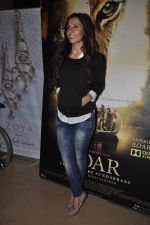 VJ Ramona Arena at Kamal Saldanah_s roar film launch in Mumbai on 31st July 2014 (101)_53db8e2bc58bc.JPG