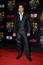 Ankit Tiwari at Life Ok Now Awards in Mumbai on 3rd Aug 2014 (509)_53df42bbdaebe.JPG