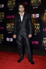 Ankit Tiwari at Life Ok Now Awards in Mumbai on 3rd Aug 2014 (510)_53df42bd76e01.JPG