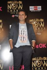 Jai Kalra at Life Ok Now Awards in Mumbai on 3rd Aug 2014 (367)_53df44cae3307.JPG