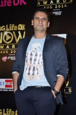 Jai Kalra at Life Ok Now Awards in Mumbai on 3rd Aug 2014 (604)_53df44d0a5122.JPG