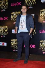 Jai Kalra at Life Ok Now Awards in Mumbai on 3rd Aug 2014 (608)_53df44d75adc7.JPG