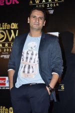 Jai Kalra at Life Ok Now Awards in Mumbai on 3rd Aug 2014 (612)_53df44e185214.JPG