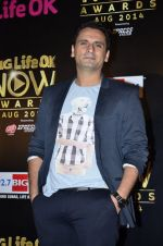 Jai Kalra at Life Ok Now Awards in Mumbai on 3rd Aug 2014 (613)_53df44e327929.JPG
