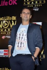 Jai Kalra at Life Ok Now Awards in Mumbai on 3rd Aug 2014 (614)_53df44e494442.JPG