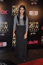 Pooja Gaur at Life Ok Now Awards in Mumbai on 3rd Aug 2014 (14)_53df46dc82b91.JPG