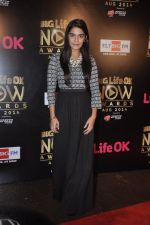 Pooja Gaur at Life Ok Now Awards in Mumbai on 3rd Aug 2014 (15)_53df46de9fba1.JPG