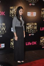 Pooja Gaur at Life Ok Now Awards in Mumbai on 3rd Aug 2014 (13)_53df46db0585b.JPG