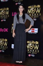 Pooja Gaur at Life Ok Now Awards in Mumbai on 3rd Aug 2014 (20)_53df46e733c5f.JPG