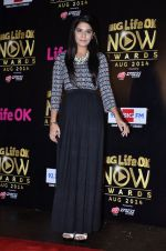 Pooja Gaur at Life Ok Now Awards in Mumbai on 3rd Aug 2014 (21)_53df46e8c0a23.JPG