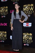 Pooja Gaur at Life Ok Now Awards in Mumbai on 3rd Aug 2014 (24)_53df46f019a35.JPG