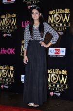 Pooja Gaur at Life Ok Now Awards in Mumbai on 3rd Aug 2014 (25)_53df46f1d3885.JPG