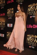 Vaani Kapoor at Life Ok Now Awards in Mumbai on 3rd Aug 2014 (387)_53df485e96af2.JPG