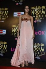 Vaani Kapoor at Life Ok Now Awards in Mumbai on 3rd Aug 2014 (653)_53df4861a93f1.JPG
