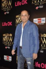 Vipul Shah at Life Ok Now Awards in Mumbai on 3rd Aug 2014 (460)_53df487ab4838.JPG