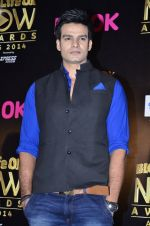 at Life Ok Now Awards in Mumbai on 3rd Aug 2014 (610)_53df443f97144.JPG