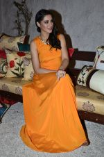 Nargis Fakhri at Portico collection launch in Olive on 4th Aug 2014 (241)_53e1c914b7c0b.JPG