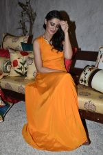 Nargis Fakhri at Portico collection launch in Olive on 4th Aug 2014 (248)_53e1c91fa998c.JPG