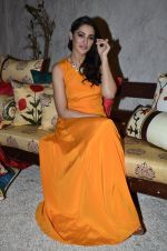 Nargis Fakhri at Portico collection launch in Olive on 4th Aug 2014 (250)_53e1c922c2e20.JPG