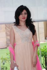 Sonal Sehgal at Divalicious exhibition in Four Seasons on 7th Aug 2014 (75)_53e4d51d01791.JPG