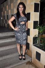 Melissa Pais celebrates Birthday party in Levo Lounge on 10th Aug 2014 (10)_53e8c37779ec7.JPG