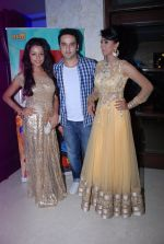 Puru Chibber at Meinu Ek Ladki Chaahiye music launch in Mumbai on 11th Aug 2014 (69)_53ea1f43c238d.JPG