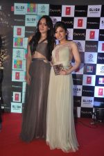 Khushali Kumar, Tulsi Kumar on ramp to promote Creature 3d film in R City Mall, Mumbai on 12th Aug 2014 (70)_53eb731a04076.JPG
